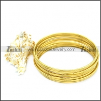 Stainless Steel Bangles b008738